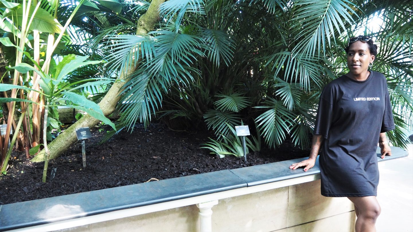 palm house, kew gardens, juanita likes blogger, missguided